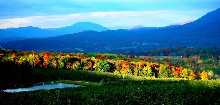 Find something for everyone in  'The Shires' of Vermont