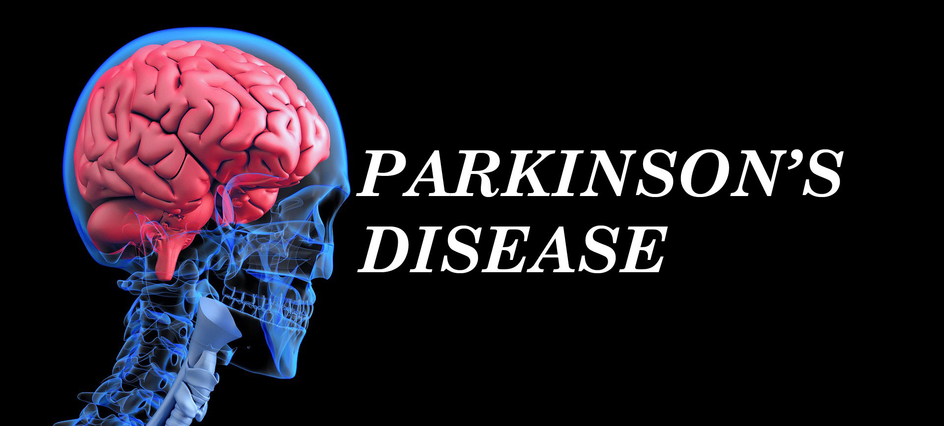 The Parkinson's Protocol eBook