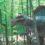 A Prehistoric Adventure