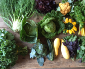 Get Farm-Fresh Food at These 7 Local CSAs